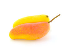 Yellow mango Stock Image