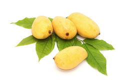 Yellow mango Stock Image
