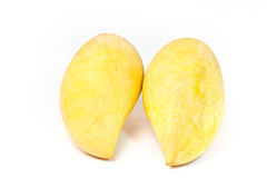 Yellow mango Royalty Free Stock Photos