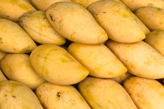 Yellow Mango stock photo