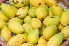 Yellow mango. Asian tropical fruits for sale.  Stock Image
