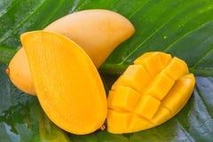 Yellow Mango fruit on banana leaf Royalty Free Stock Image