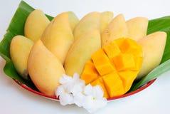 Yellow mango fruit. Is dessert thaifood Stock Photos