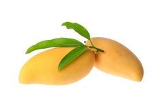 Yellow mango isolated on white background Royalty Free Stock Images
