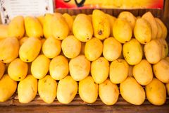 Yellow Mango in the local market on island of Stock Photos