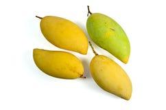 Yellow mango. Thai fruit favorite  on a white background Stock Photos