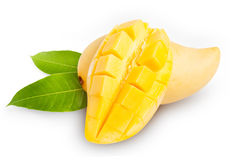 Yellow mango  on white Stock Images