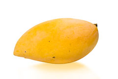 Yellow mango on white with clipping path Royalty Free Stock Images