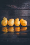Yellow Mangoes Stock Photography