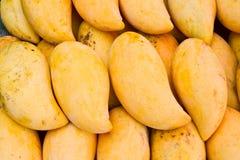 Yellow mangos Royalty Free Stock Image