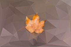 Yellow maple leaf on the brown background Stock Photo