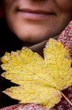 Yellow maple leaf near the smiling face of a charming woman, autumnal mood_ stock photos