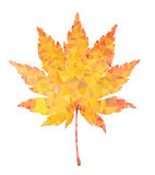Yellow maple leaf vector polygon isolated Royalty Free Stock Photography
