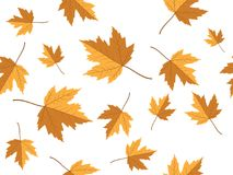 Yellow maple leaf vector seamless pattern for wallpaper, background, cover, greeting card, fabric textile Royalty Free Stock Photography
