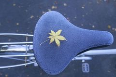 A yellow maple leave on frozen bicycle seat during Autumn Stock Photo