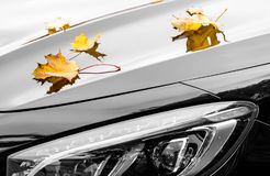Maple leaves on luxury car at autumn Royalty Free Stock Images