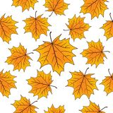 Yellow maple leaves over white seamless pattern. Autumn vector background. Yellow maple leaves over white seamless pattern. Autumn vector background vector illustration
