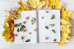 Yellow maple leaves and top notebook with dried flowers Stock Images