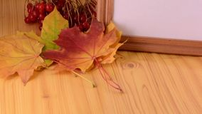 Yellow maple, viburnum and empty wooden box plate stock footage