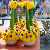 Yellow marigold flower Stock Image