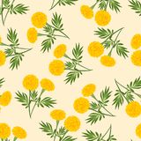 Yellow Marigold Seamless on Beige Ivory Background. Vector Illustration.  vector illustration