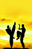 Yellow Martial Arts Background Stock Image