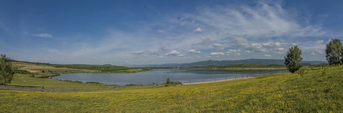 Yellow meadow near Milada lake. In summer hot day Royalty Free Stock Photography