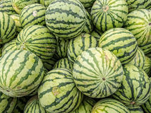Yellow Meated Watermelon Royalty Free Stock Photo
