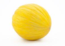 Yellow melon Stock Photos