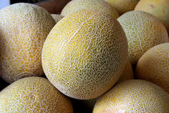 Yellow melon. The beautiful yellow melon from supermarket Royalty Free Stock Images