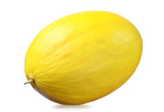 Yellow melon Stock Image