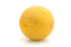 Yellow melon Royalty Free Stock Photo