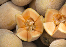 Yellow melon. The close-up of yellow melon Stock Photography