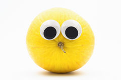Yellow melon with googly eyes on white background. Melon face Royalty Free Stock Images