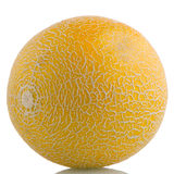 Yellow melon Stock Images