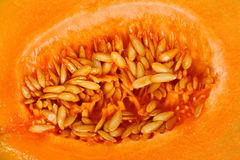 Yellow melon seeds inside Royalty Free Stock Photo