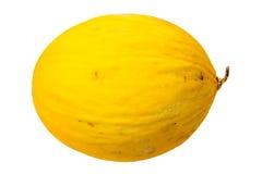 Yellow melon Royalty Free Stock Photos