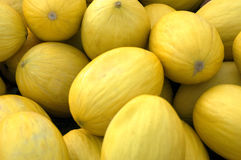 Yellow Melons. A crate of yellow melons at the market Royalty Free Stock Photo