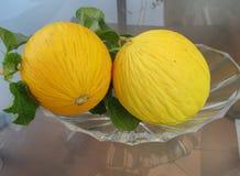 Yellow melons Stock Photos