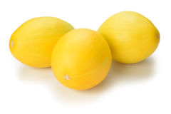 Yellow melons Stock Image