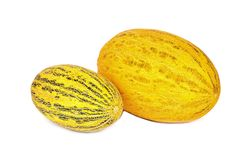 Yellow melons Royalty Free Stock Photography