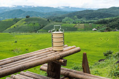 Yellow metal carrier tiffin among green field background Stock Image