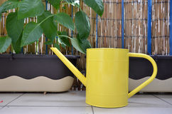 Yellow metal watering can on the balcony next to pepper plants in flower boxes Stock Image