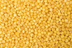 Yellow millet Royalty Free Stock Photo