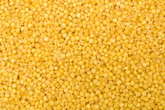 Yellow millet Stock Photography