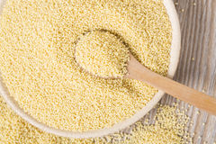 Yellow millet seeds Royalty Free Stock Images