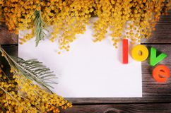 Yellow mimosa on wooden boards Royalty Free Stock Photography