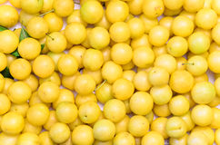 Yellow mirabelle plums, background, texture Royalty Free Stock Photos