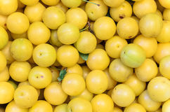 Yellow mirabelle plums, background, texture Stock Image
