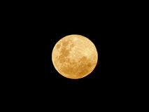 Yellow moon. View of the moon over the African continent stock images